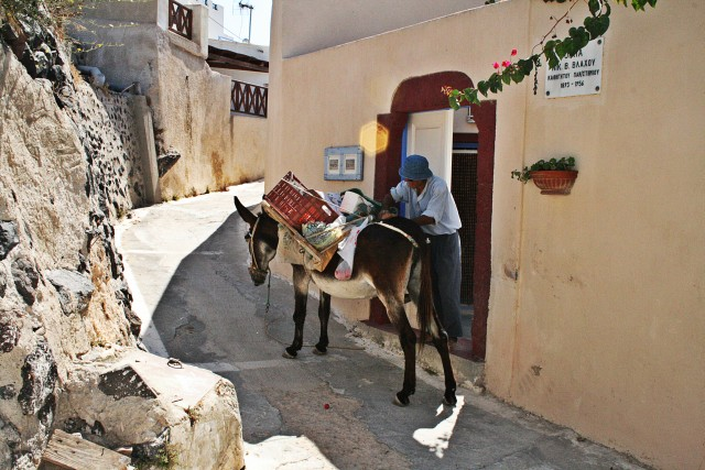 Santorini donkey rides, a folklore experience